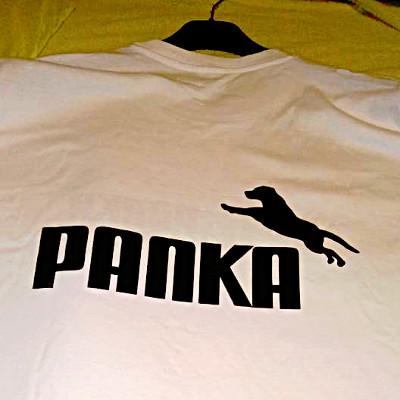 polok_c